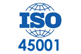 ISO 45001 for management