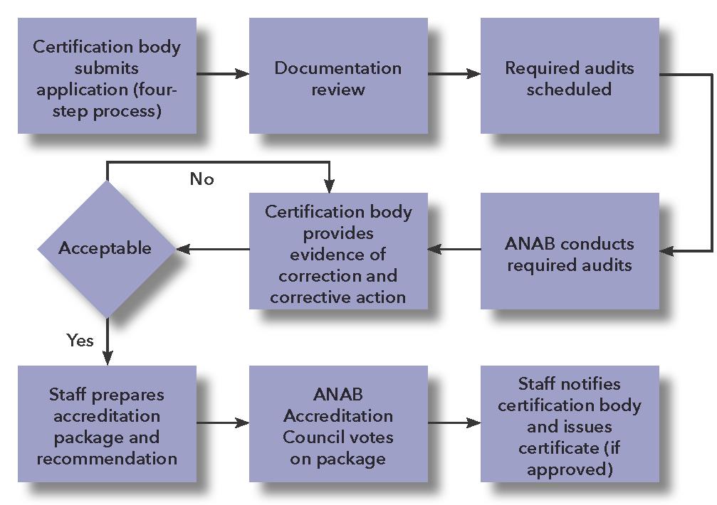 anab ms accreditation process